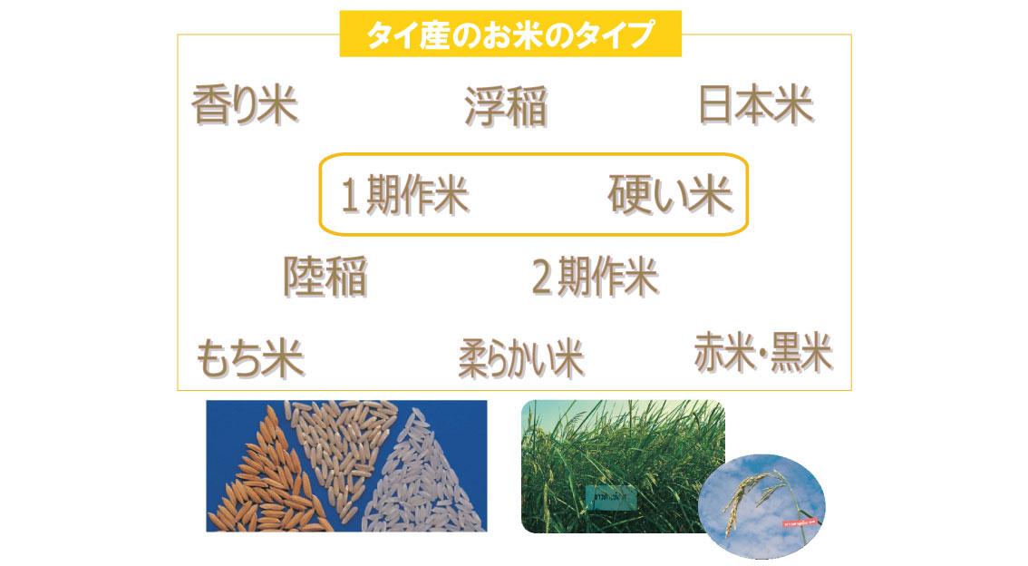 ケンミン食品が使うお米へのこだわり